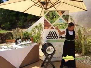 Más de 100 establecimientos en Huelva y 70 en Sevilla han ofrecido información específica sobre La Ruta del Vino del Condado dentro de esta acción promocional de la Diputación.