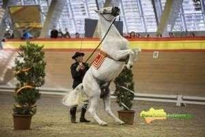 El jinete de la institución Ignacio López participó con el caballo Naipe, obteniendo medalla de bronce y primer puesto con caballos PRE.