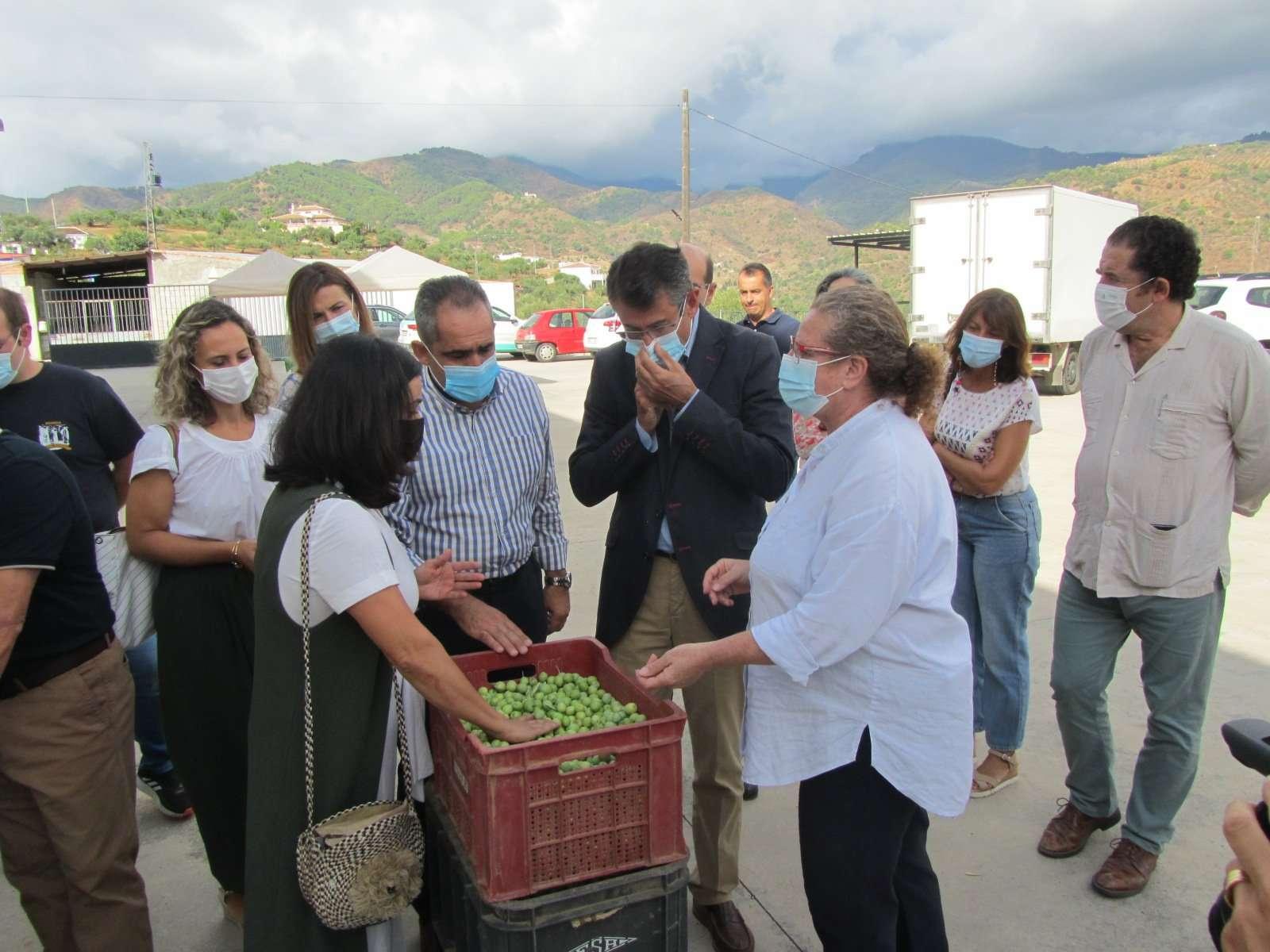 """Fernández Tapia-Ruano subraya la sostenibilidad, el valor nutricional y la conservación del medio ambiente de un producto que """"responde a las nuevas exigencias de los consumidores"""""""