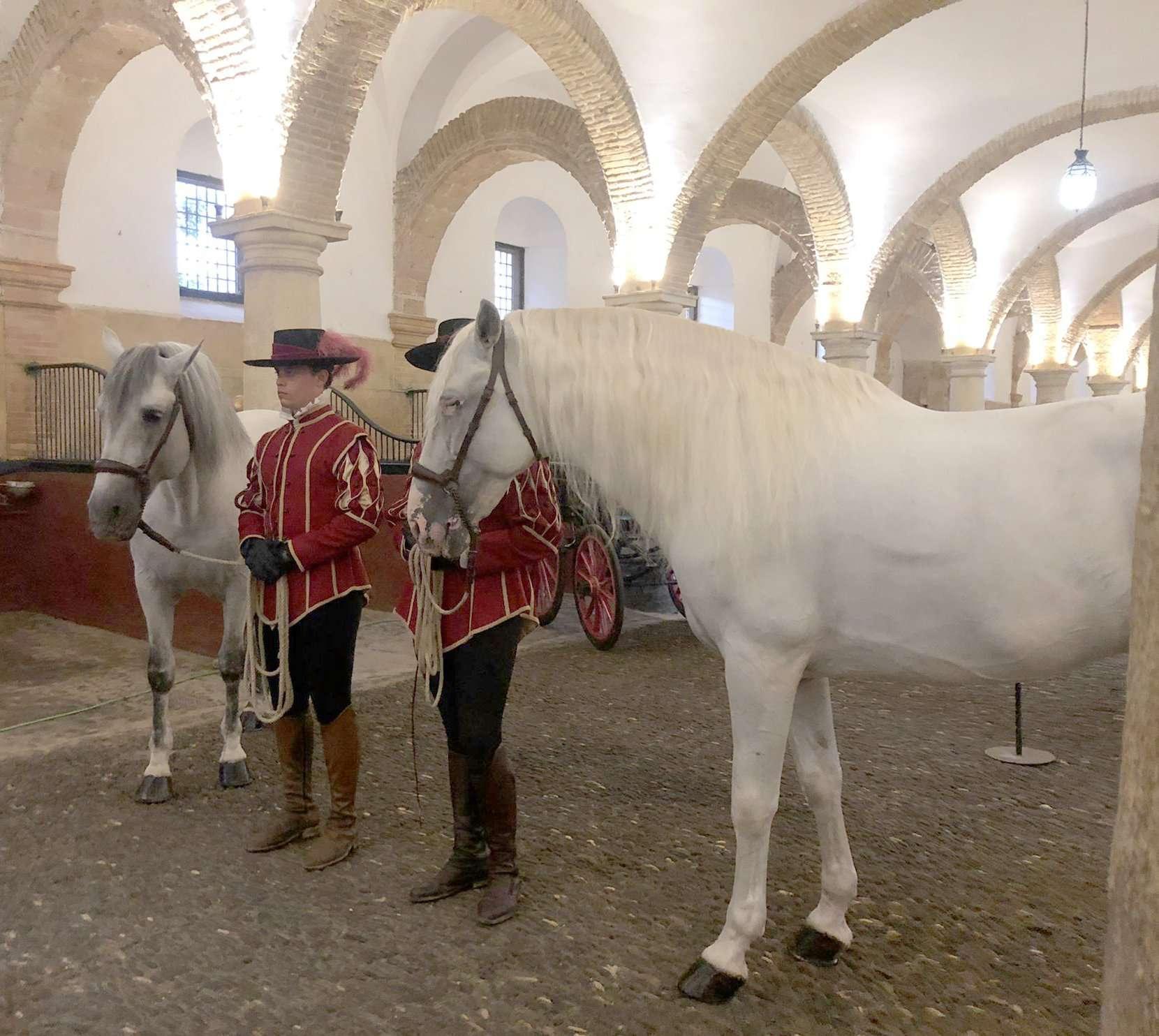 Córdoba Ecuestre ha conseguido dar luz de nuevo al mundo del caballo